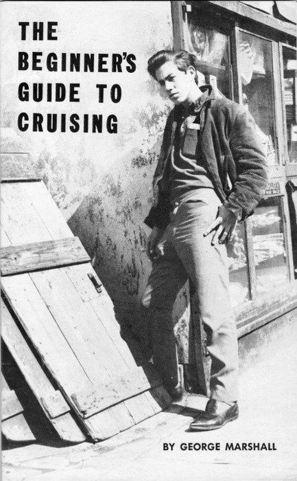 Beginner's Guide to Cruising (full pdf)